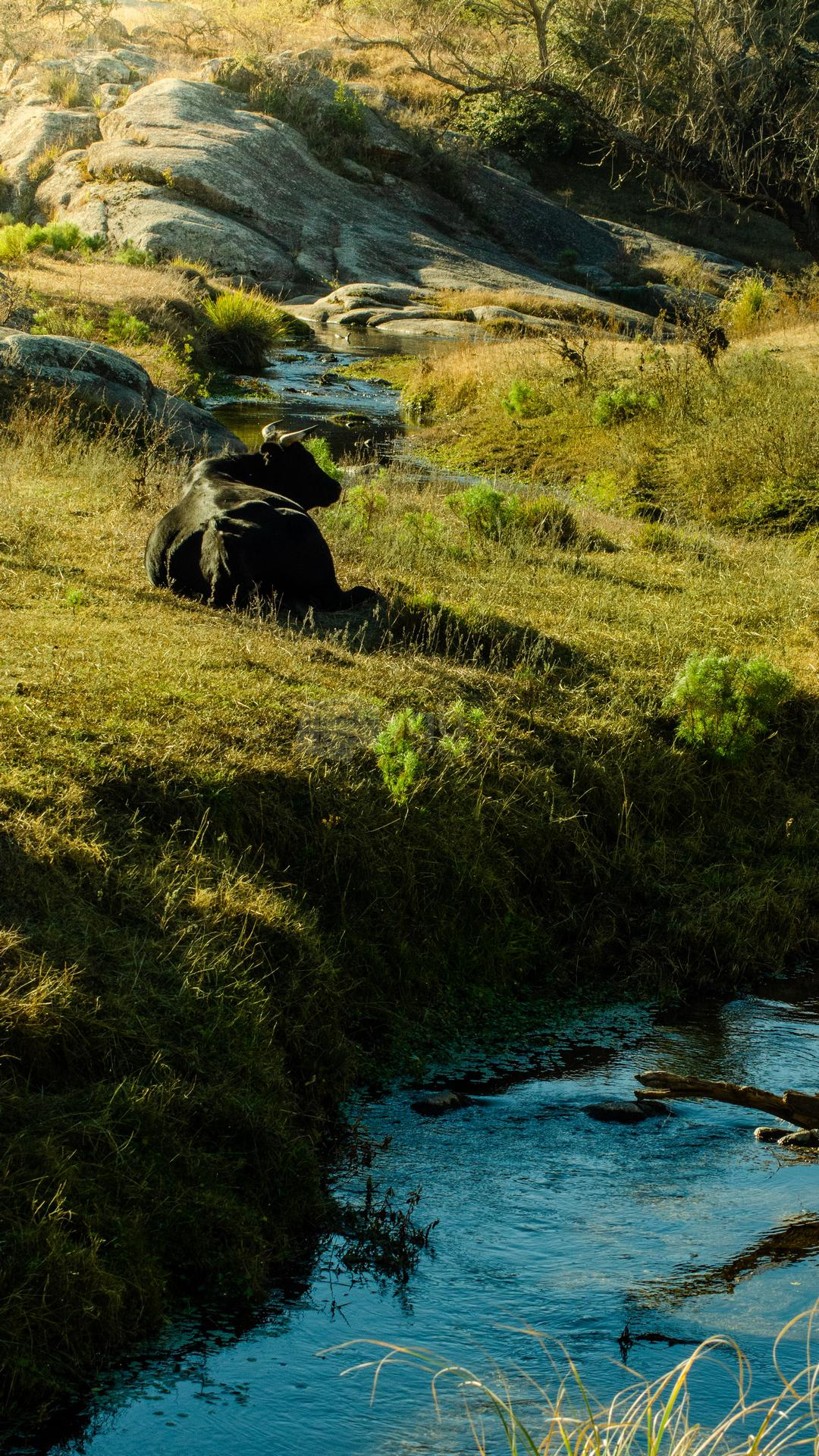 Calmayo - Turismo en Villa General Belgrano 5